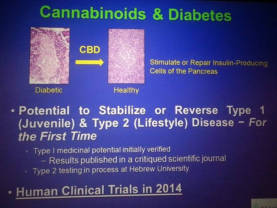 CBD diabetes