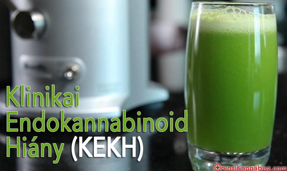 Clinical endocannabinoid deficiency - HUN