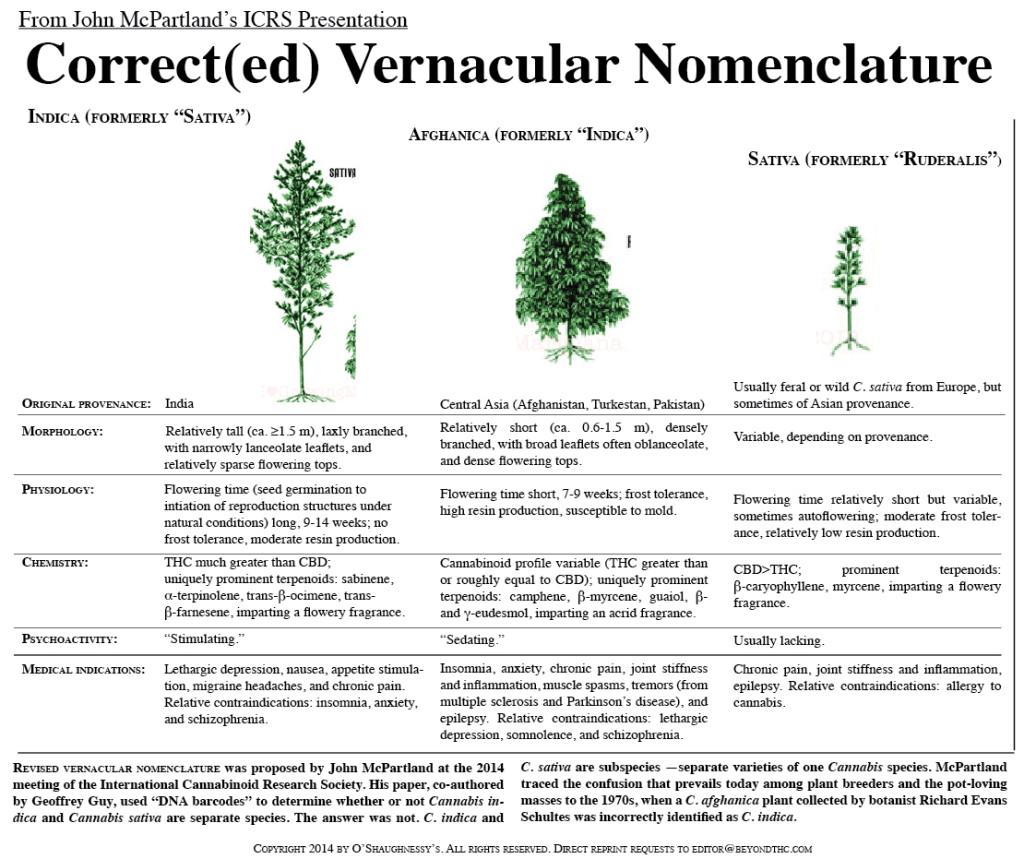 Corrected Vernacular Nomenclature