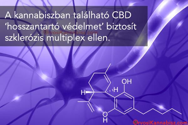 CBD protection in multiple scelrosis - HUN