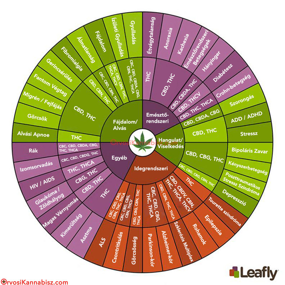 Cannabinoid wheel2 - HUN