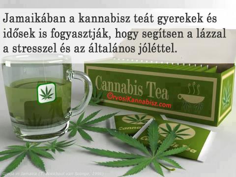Cannabis tea Jamaica - HUN