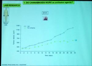 Cannabinoids5