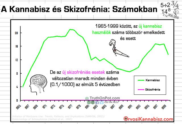 Schizophrenia - HUN