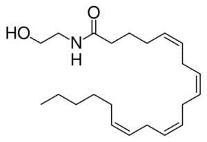 Anandamide_skeletal
