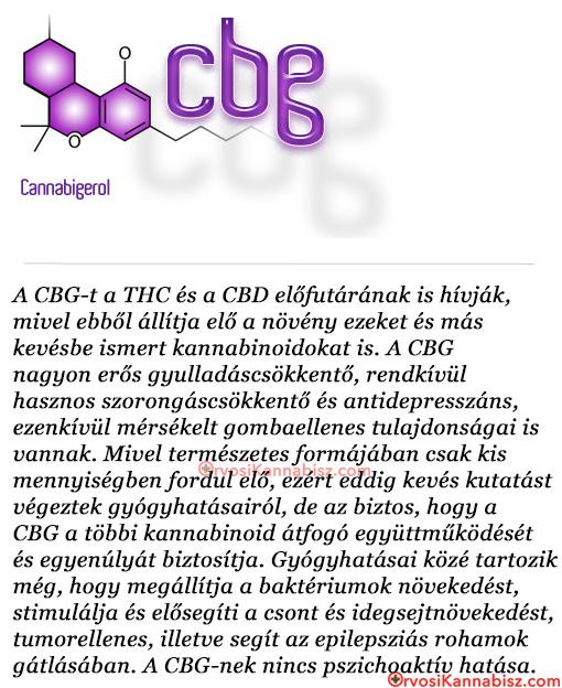 CBG azmed - HUN