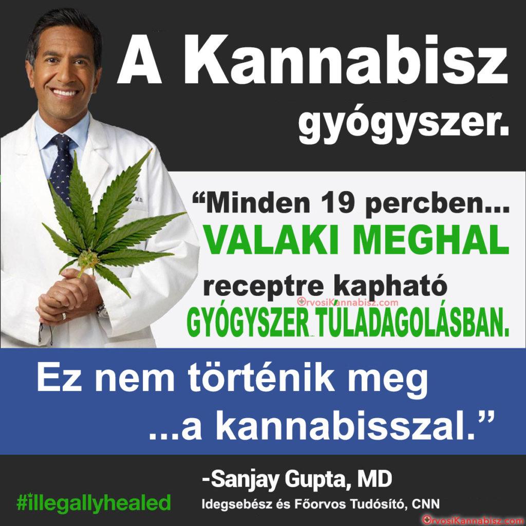Dr Sanjay Gupta - HUN