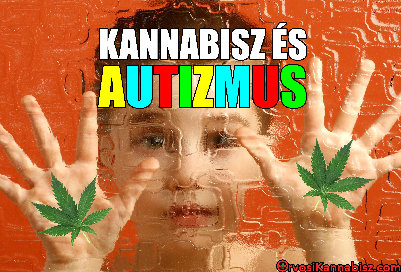 Cannabis and autism - HUN